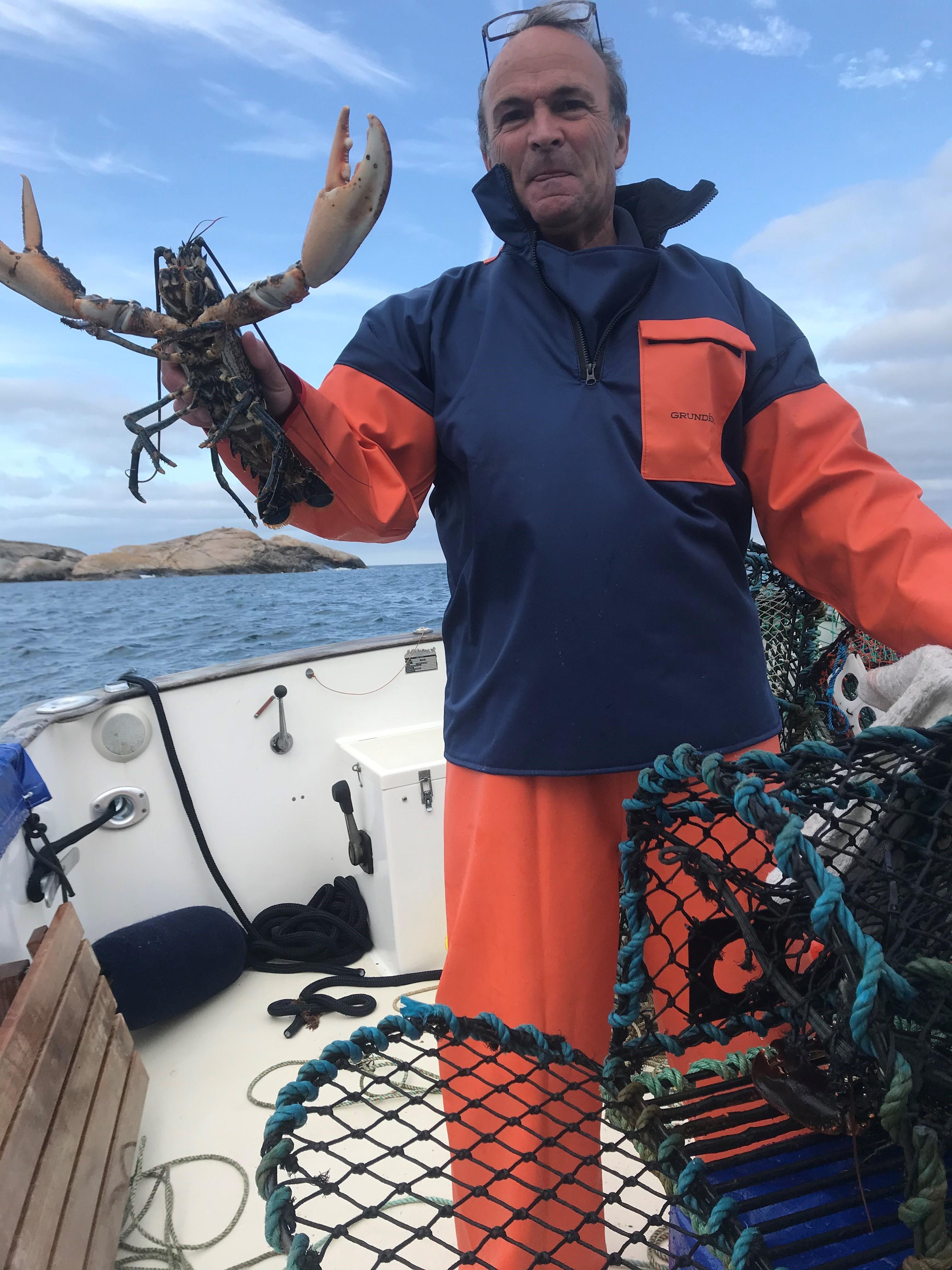 Hummerfiske i Fjällbacka